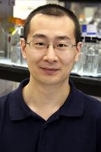 Wenshuai Wang's picture